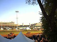 WLKY-Kentucky Derby